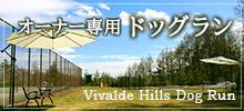 霧ヶ峰高原別荘地ビバルデの丘ドックラン